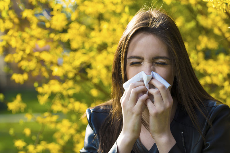 Tips to Protect Your Health from Seasonal Allergies
