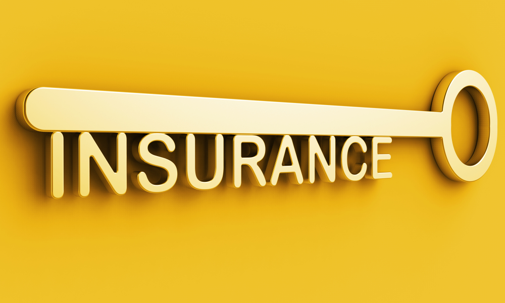 Exploring and Understanding the Features of Personal Lines Insurance